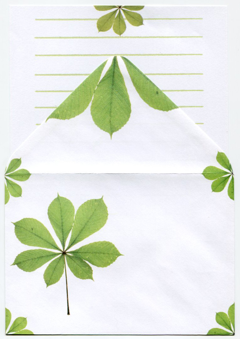 stationery set chestnut leaves stationery accessories