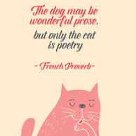 Kitten's quotes - The dog may be wonderful prose, but only the cat is poetry