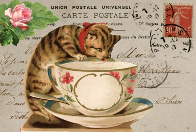 Cat & cup collage