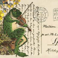 Collage with a frog