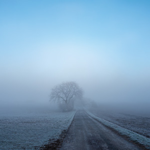 Winter misty landscape