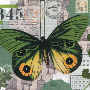 Marika Wieczorek - Butterfly in green