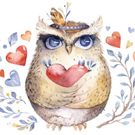 Owl with the heart