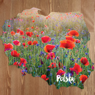 Map - Poppies field