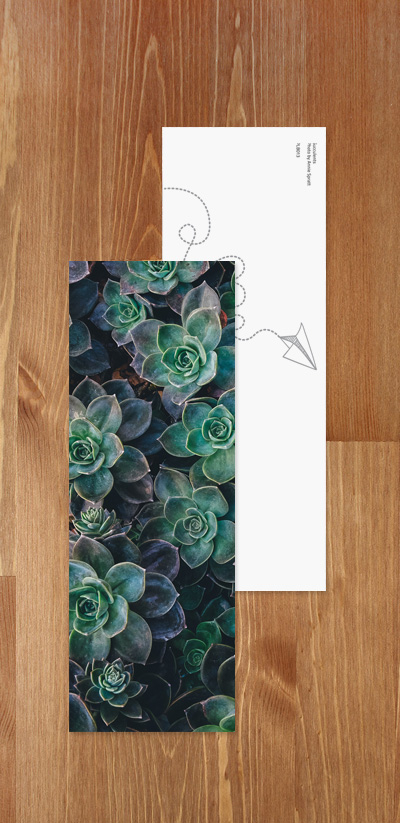 Bookmark - Succulents