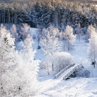 Poland - Love to be here... - Masuria in winter