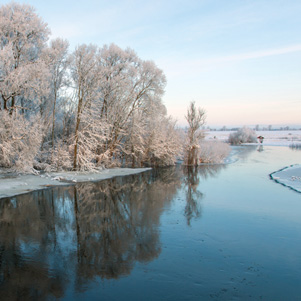 Poland - Love to be here... - Narew river in winter