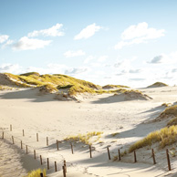 Poland - Love to be here... -  Shifting sand dunes, Slowinski National Park