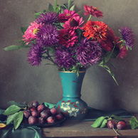 Still life with asters and plums