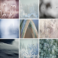 Winter mosaic