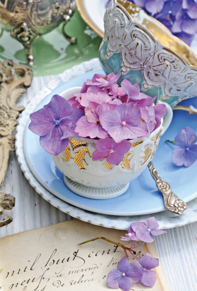 Hydrangeas and porcelain