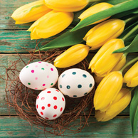 Easter eggs and yellow tulips