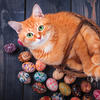 Red cat & Easter eggs