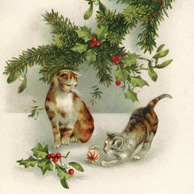Cats and Christmas ornaments