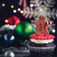 Gingerbread man and cupcake